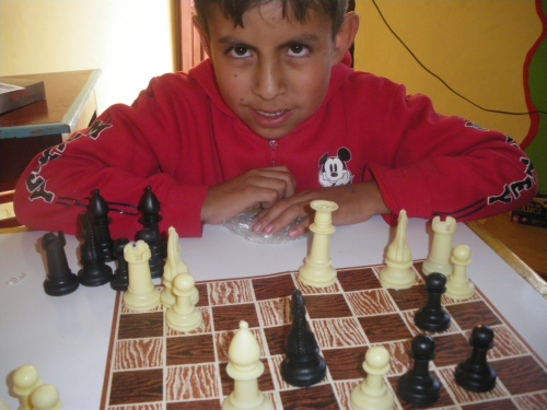 This little guy does not know how to play chess.